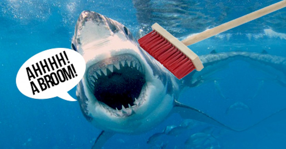 Shark V Broom
