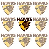 New Hawks CEO